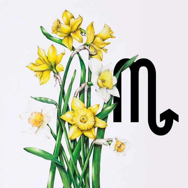 Что принесет нам весна 2015? Гороскоп на март от профессионального астролога
