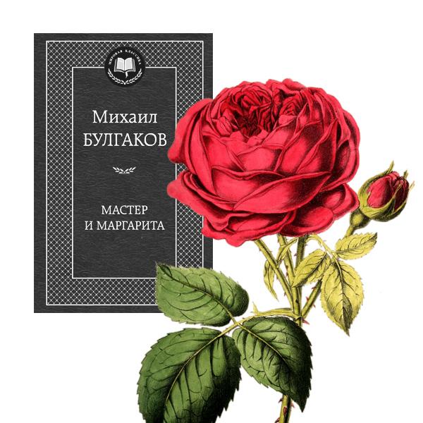 003 small1 Цветы в произведениях любимых писателей