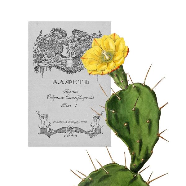 004 small1 Цветы в произведениях любимых писателей